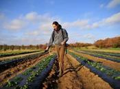 GRANDE OPPORTUNITA' Finanziamenti 70mila euro avvia nuova impresa agricola