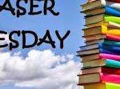 """Teaser tuesdays #69: leggi estratto """"l'uomo vorrei"""" kerstin gier"""