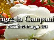 sagre perdere: weekend 30-31 maggio 2015
