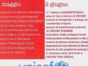 Maggio Giugno, Arte Vino 2015 Badia Passignano