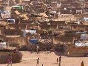 Scontri Somalia forze sicurezza alla frontiera l'Etiopia/Vittime civili