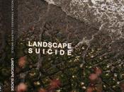 NICOLA TIRABASSO VALERIO MAIOLO, Landscape Suicide