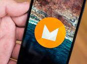 Google annuncia Android Developer Preview: ecco tutte novità