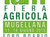 Fiera Agricola Mugellana