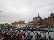 Bici Amsterdam: dove noleggiarle