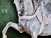 teatro equestre White tutta l'estate Verona