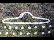 Cronistoria della presenza aliena sulla terra: foto compagnia molto antica