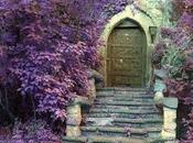 porta giusta.