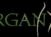 Collaborazione: ORGAN(Y)C