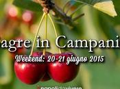 sagre perdere Campania: weekend 20-21 giugno 2015
