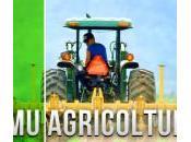 """agricola, Caleca propone sospensione pagamenti: attenda Tar"""""""