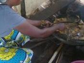 Pescheria delle mama karanga: prossima apertura!