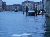 """Canali Venezia invasi Plastica Polistirolo"""""""