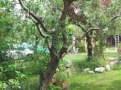 Castelli Romani: un'oasi naturale ricca storia