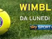 Tennis Wimbledon 2015, diretta esclusiva Sport canali dedicati