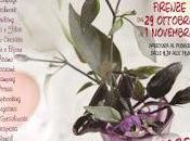Novità mondo creativo Florence Creativity