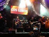 Lobos all'Estival Jazz Lugano, luglio 2015