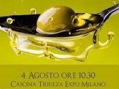 Valore Valore. L'olio oliva varietà Pennulara sbarca Expo 2015.