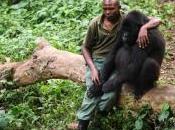 Ranger gorilla uccisi parco nazionale antico dell'Africa