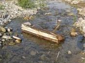 fiume (riflessioni tutte stagioni)