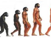 GIORNATA EVOLUTIVA ANDREA ARCA #VentagliDiParole #UniversoVersi