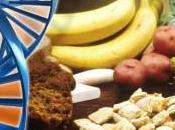 cosa mangi, calorie molecole?