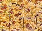 Croccantini semi sesamo pistacchi bacche Goji