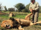 leone adora massaggini