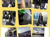 storia VINI SOLE Enrico Cresta: come distribuisce vino