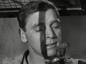 L'uomo Alcatraz L'uccellino