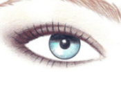 ultimate guide make eyes eyeshadows vol.
