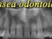 Dimmi male L'odissea odontoiatrica*