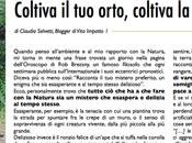 Vita impatto Vivere Sostenibile Basso Piemonte Novembre