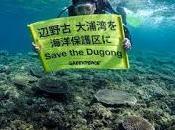Giappone nega alla Rainbow Warrior permesso invetigare sull'habitat degli ultimi dugonghi