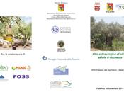 filiera dell'olio extravergine oliva l'IGP Sicilia convegno Palermo.