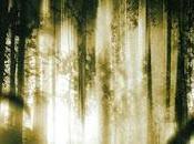 Altered Paura dallo spazio profondo (2006)