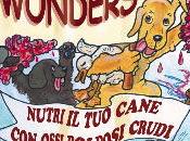 Work Wonders Nutri cane ossi polposi crudi Lonsdale