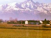 Pinerolo, Medioevo sotto montagne