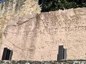 Cosa vedere Assisi, Città della Pace