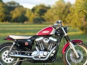 Harley 1200 2004 Hageman Motorcycles