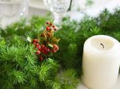 Natale Verde: biscotti alla cannella