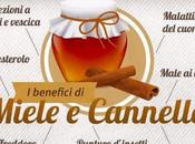 Benefici miele cannella