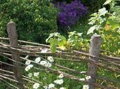 Recinzioni giardino Houzz)