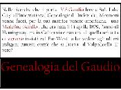 Madeline Gaudio Valpolicella