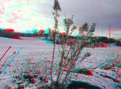Scende prima neve