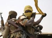 Attentato suicida mercato Bodo, Camerun