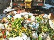 Francia: approvata legge contro sprechi alimentari