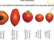 """Giovedì febbraio alle 17:00 Laboratorio Urbano Salento kalò Zollino: """"COLTURE CONFRONTO: antiche varietà pomodoro"""""""