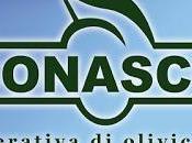 Calabria, nuovo corso assaggiatori olio olive.