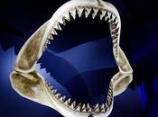 Denti perfetti? sogno potrebbe avverarsi!!